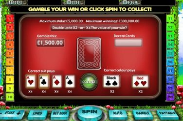 Gamble feature for online slots